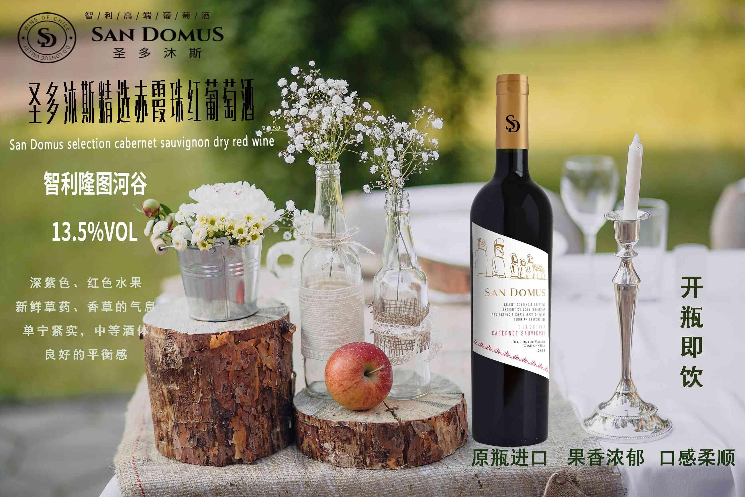 智利金纳斯家族酒庄隆图河谷圣多沐斯精选赤霞珠红葡萄酒