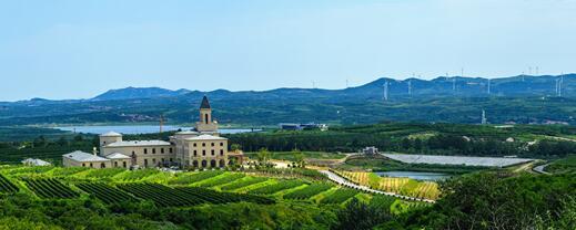 《烟台市葡萄酒产业发展专项资金实施细则》公布