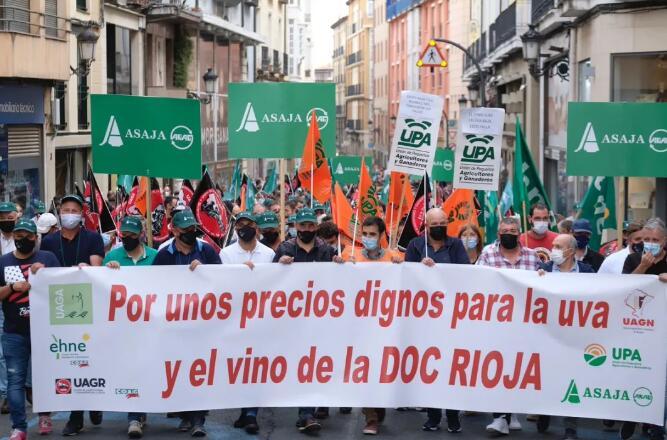 一千多名葡萄农参加示威活动,抗议葡萄收购价格不合理