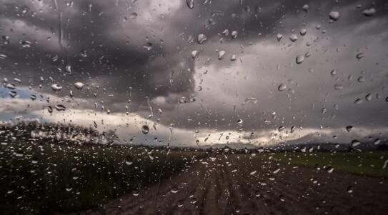 恶劣天气威胁到了意大利葡萄采收