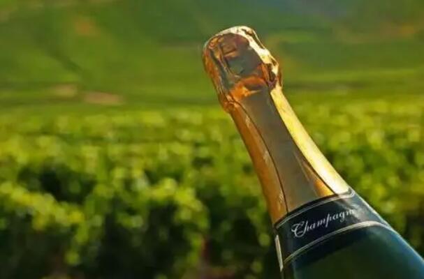 2021年法国香槟出货量将达到3.05亿瓶